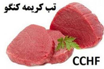تب خونریزی دهنده کریمه کنگو (CCHF) چیست؟
