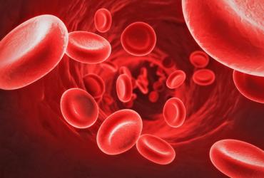 درباره گروه خونی O مثبت بیشتر بدانیم